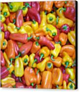 Peppers Canvas Print by David Bearden