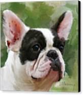 Pet Bulldog Portrait Canvas Print