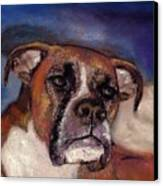 Pet Portraits Canvas Print