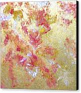 Petal Abstraction Canvas Print
