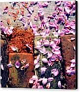 Petals On The Bricks 2 Ae Canvas Print