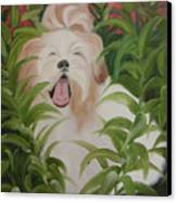 Pflower Nap Canvas Print