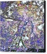 Phanquzhi Canvas Print by Eikoni Images