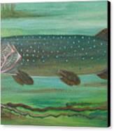 Pike Canvas Print by Anna Folkartanna Maciejewska-Dyba