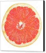 Pink Grapefruit Canvas Print by James BO  Insogna