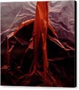 Plastic Bag 07 Canvas Print