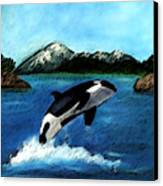 Playful Orca Canvas Print