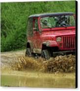 Playing In The Mud Canvas Print