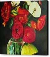 Plum Ranunculus Canvas Print by Dana Redfern