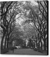 Poets Walk In Central Park Canvas Print by Christopher Kirby