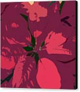 Poinsettias Work Number 4 Canvas Print