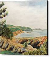 Point Lobos Canvas Print by Don Perino