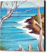 Point Surf Canvas Print