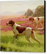 Pointers In A Landscape Canvas Print