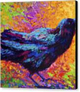 Poised - Crow Canvas Print by Marion Rose