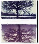 Polaroid Transfer Tree Canvas Print by Jane Linders