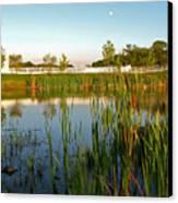 Pond At Sunset Canvas Print