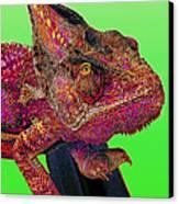 Pop Art Chameleon Canvas Print by L S Keely