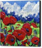 Poppies 003 Canvas Print