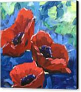 Poppies Splender Canvas Print