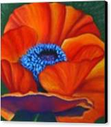 Poppy Pleasure Canvas Print