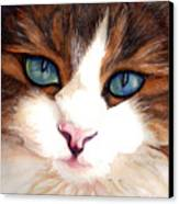 Portrait Of A Cat Canvas Print by Janine Riley