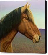 Portrait Of A Horse Canvas Print by James W Johnson