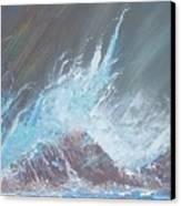 Portrait Of A Wave Canvas Print