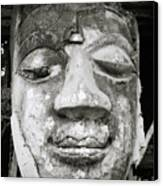 Portrait Of The Buddha Canvas Print