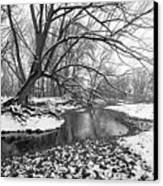 Poudre Black And White Canvas Print by James Steele