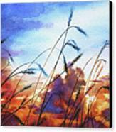 Prairie Sky Canvas Print by Hanne Lore Koehler