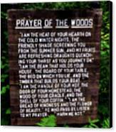 Prayer Of The Woods Canvas Print by Michelle Calkins