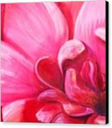 Pretty In Pink Canvas Print by Dana Redfern