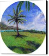 Princeville Palm Canvas Print by Kenneth Grzesik