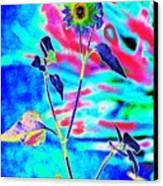 Psycho Daisy Canvas Print