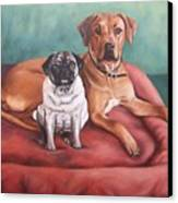 Pug And Rhodesian Ridgeback Canvas Print