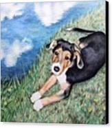 Puppy Max Canvas Print