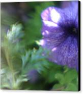 Purple In Monets Garden Canvas Print
