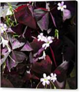 Purple Leaves With Tiny Pink Flowers Canvas Print