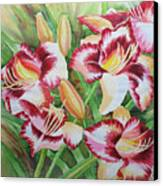 Purple Lilies.2007 Canvas Print