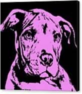 Purple Little Pittie Canvas Print by Dean Russo