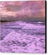Purple Majesty  Canvas Print by Betsy Knapp
