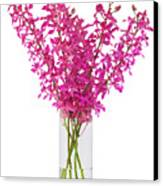 Purple Orchid In Vase Canvas Print