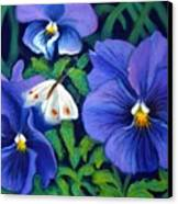 Purple Pansies And White Moth Canvas Print