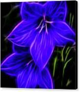 Purple Passion Canvas Print by Joann Copeland-Paul