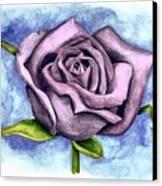 Purple Rose Canvas Print by Robert Morin