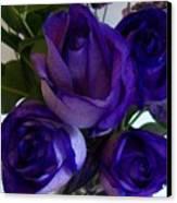 Purple Roses Ll Canvas Print by Marsha Heiken
