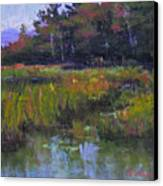 Pyramid Lake Marsh Canvas Print
