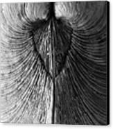 Quahog Closeup No.1 Canvas Print