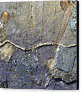 Quarrymen Canvas Print
